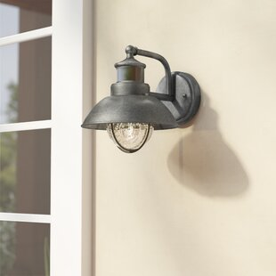 Beachcrest Home Archibald Dualux� 1-Light Outdoor Barn Light