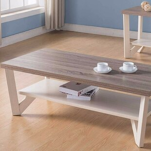 August Grove Ald Stylish Center Display Coffee Table with Storage
