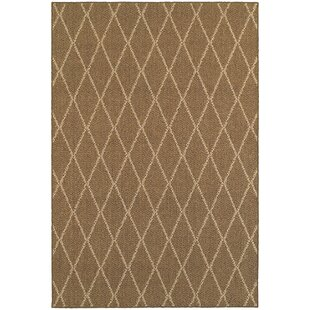 Carondelet Brown/Sand Indoor/Outdoor Area Rug