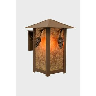 Baysidevillage 1-Light Outdoor Sconce by Loon Peak