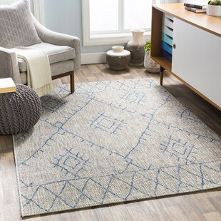 Gunter Bohemian Khaki/Blue Indoor/Outdoor Area Rug