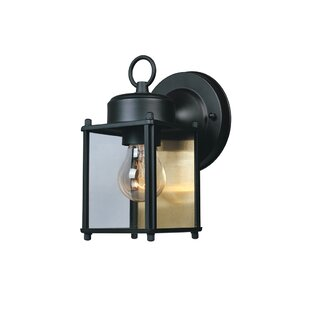 Slusser 1-Light Outdoor Wall Lantern