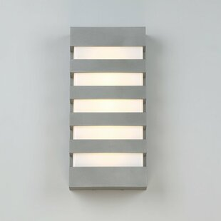 Best Reviews Haggins LED Outdoor Sconce By Ivy Bronx