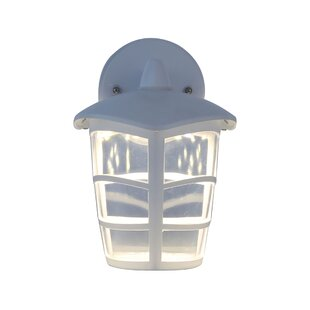 Winston Porter Medfield LED Outdoor Wall Lantern