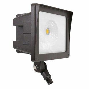 Elco Lighting 1-Light LED Flood Light