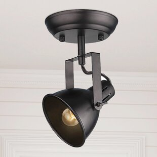 Pompa 1-Light Semi Flush Mount by Brayden Studio