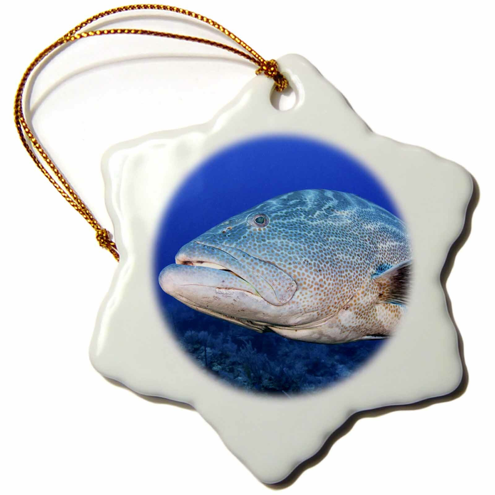 The Holiday Aisle Grouper Jardines De La Reina Np Cuba Snowflake Holiday Shaped Ornament Wayfair