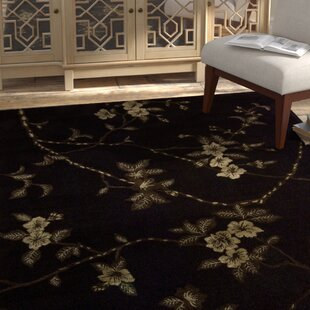Shopping for Dupoint Hand-Tufted Black Area Rug ByBloomsbury Market