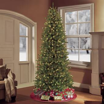 White Christmas Tree With Lights.Pre Lit Slim Fraser Green Fir Artificial Christmas Tree With 800 Clear White Lights
