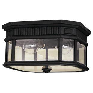 Darby Home Co Chesterhill 2-Light LED Outdoor Flush Mount