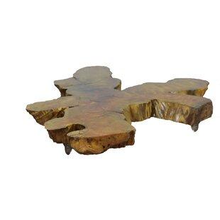 Loon Peak Ramer Root Coffee Table
