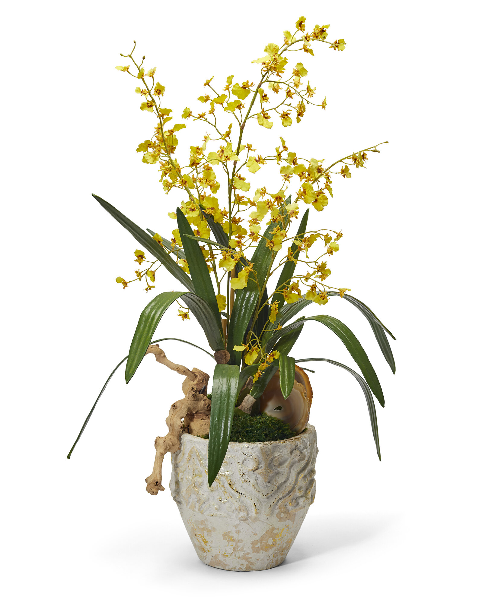 T C Floral Company Orchids Floral Arrangement In Planter Wayfair