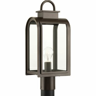 Colona 1-Light Metal Lantern Head