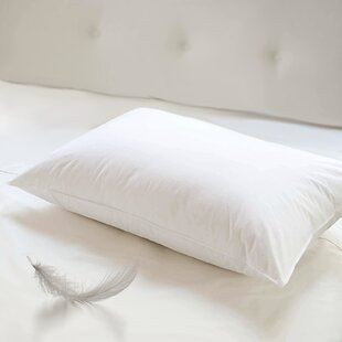 Feathers Standard Pillow