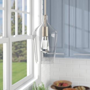 Charlton Home Oakhill 1-Light Novelty Pendant