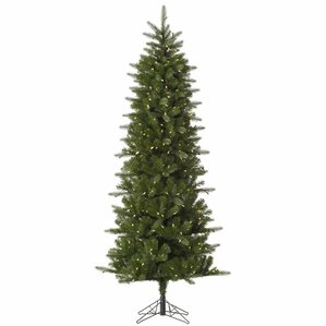 carolina pencil 65 green spruce artificial christmas tree with 350 led white lights - Tall Christmas Tree