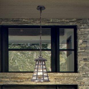 17 Stories Neelesh 4-Light Outdoor Pendant