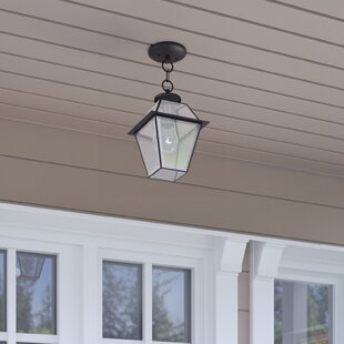 Orchard Lane 1-Light Outdoor Hanging Lantern