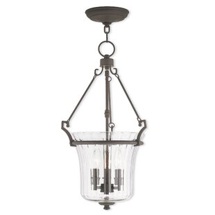 Bolindale 3-Light Urn Pendant by Darby Home Co