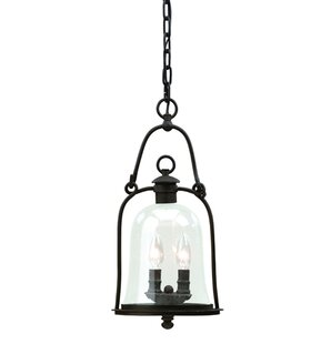 Darby Home Co Theodore 3-Light Outdoor Pendant