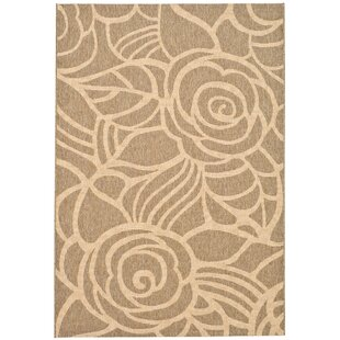 Laurel Brown Indoor/Outdoor Area Rug