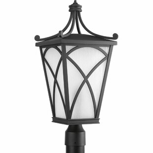 Alexandra Lantern Head 1 Light Outdoor Hanging Pendant