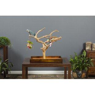 Wooden Bird Toy Wayfair