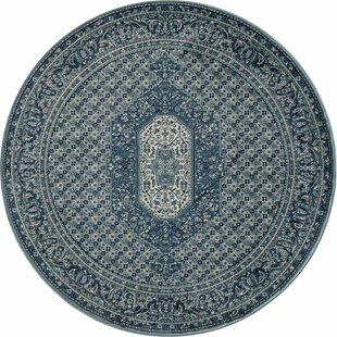 Comparison Hudson Blue Area Rug By Charlton Home