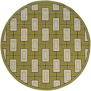 Bahr Green Indoor/Outdoor Area Rug