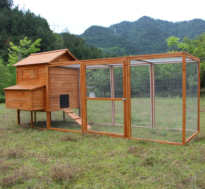 Tucker Murphy Pet Beasley Hen Chicken Coop With Chicken