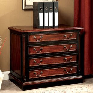 Astoria Grand Cheshire 2 Drawer Lateral F..