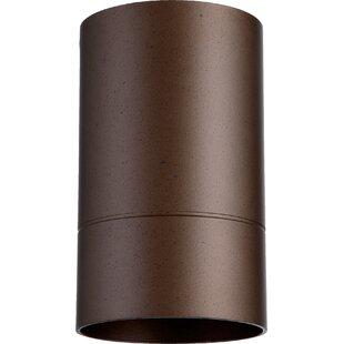 Price Check Arter Transitional 1-Light Outdoor Metal Flush Mount By Wade Logan
