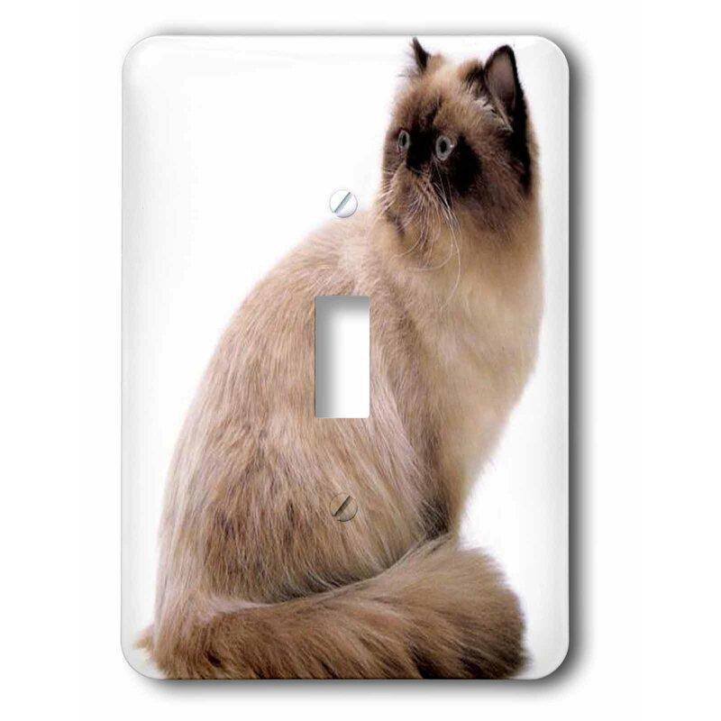 3drose Himalayan Cat 1 Gang Toggle Light Switch Wall Plate Wayfair