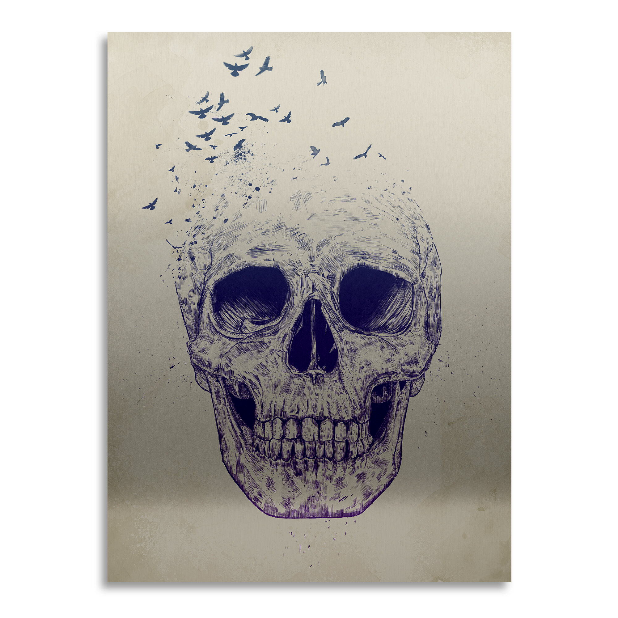 Trademark Art Let Them Fly Graphic Art On Metal Wayfair