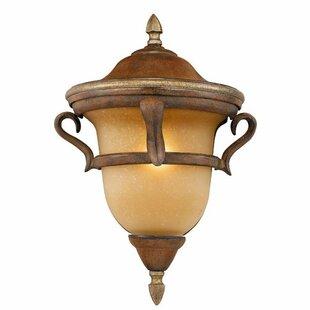 Brack 4-Light Outdoor Hanging Lantern by Astoria Grand