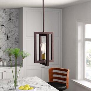 Deltoro 1-Light Square/Rectangle Pendant by Mercury Row