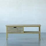 Izatt Coffee Table with Storage by Brayden Studio®