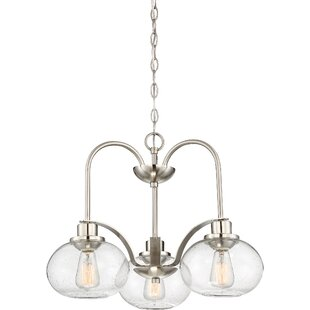 Beachcrest Home Braxton 3-Light Shaded Ch..