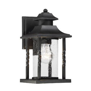 Birch Lane™ Barrow Outdoor Wall Lantern