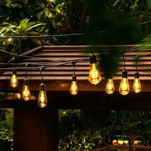 Edison Outdoor String Lights Outdoor string lights youll love wayfair 24 light 48ft globe string lights workwithnaturefo