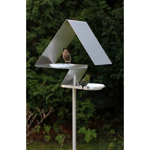 Bird House By Sol 72 Outdoor