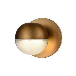 Liesl 1-Light LED Outdoor Sconce