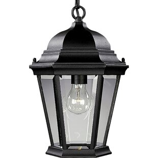 Alcott Hill Triplehorn1-Light Hanging Lantern