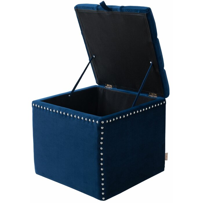 Terrific Eloisa Storage Ottoman Dailytribune Chair Design For Home Dailytribuneorg
