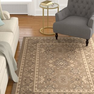 Bacall Brown / Creme Indoor/Outdoor Area Rug