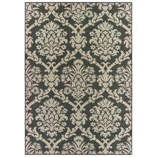 Berryville Floral Lattice Gray/Charcoal Indoor/Outdoor Area Rug