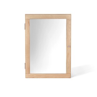 40cm X 55.5cm Surface Mount Flat Mirror Cabinet By Mercury Row