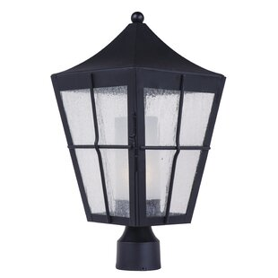 Albrecht Outdoor 1-Light Lantern Head by Bloomsbury Market