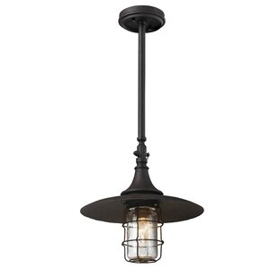 Savings Humboldt 1-Light Outdoor Pendant By Longshore Tides