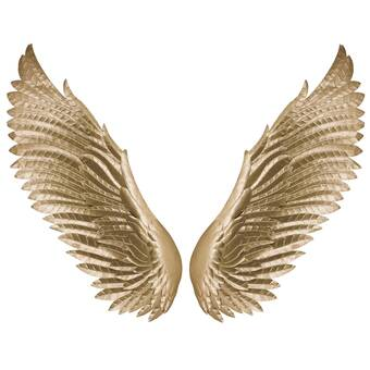 Rosdorf Park 2 Piece Sculptural Angel Wings Wall Décor Set Wayfair
